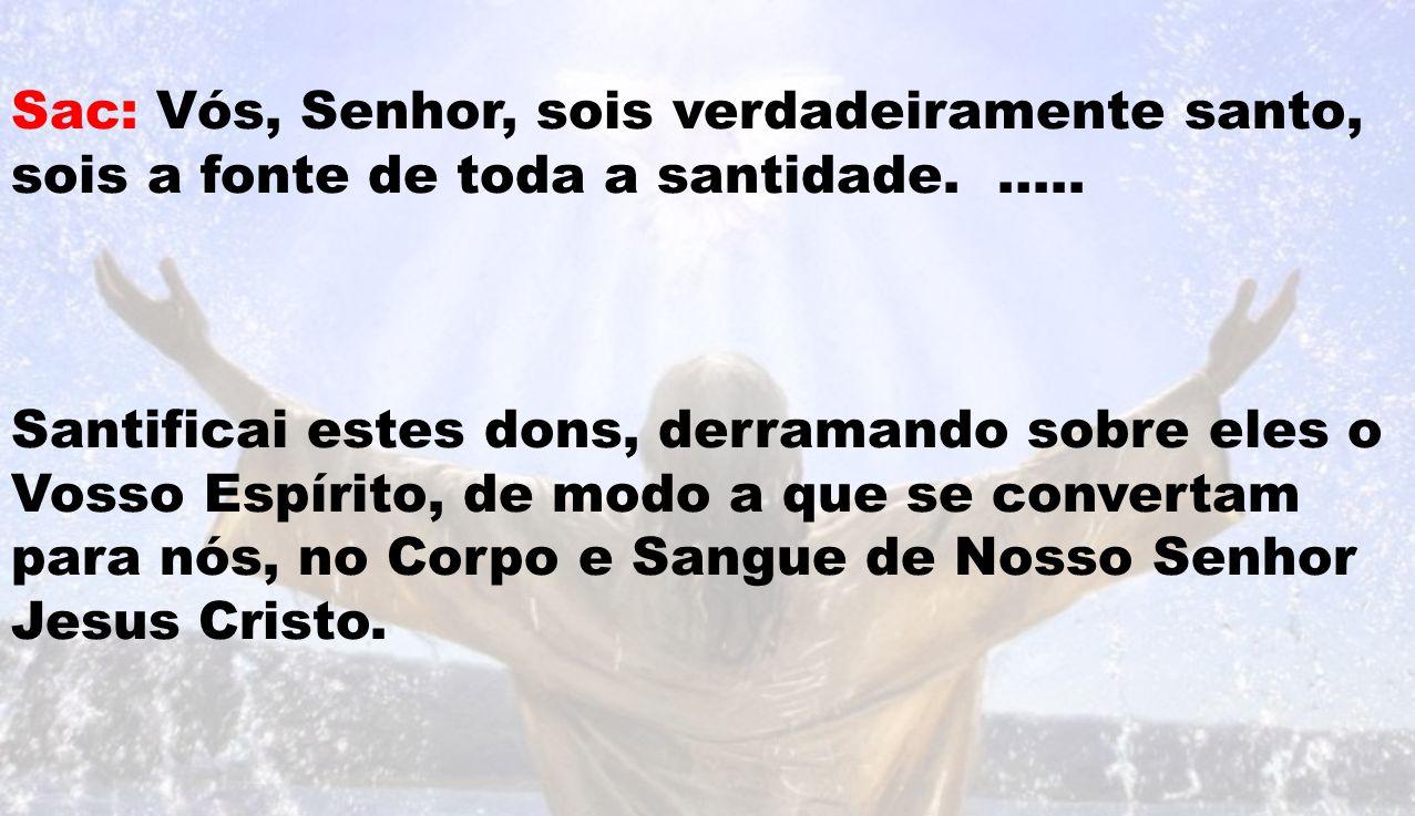 Sac: Vós, Senhor, sois verdadeiramente santo, sois a fonte de toda a santidade. …..