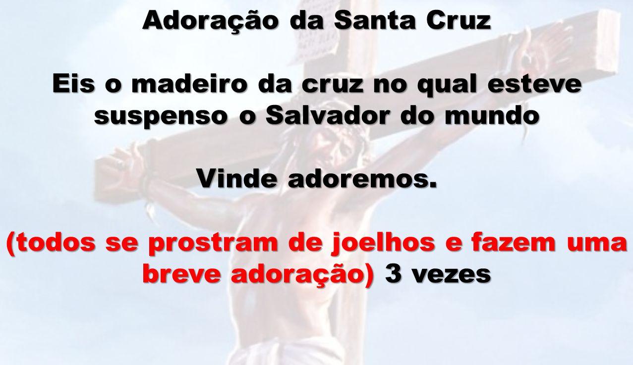 Eis o madeiro da cruz no qual esteve suspenso o Salvador do mundo