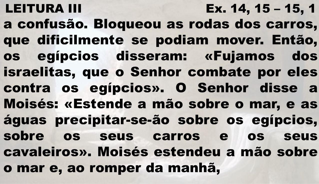 LEITURA III Ex. 14, 15 – 15, 1