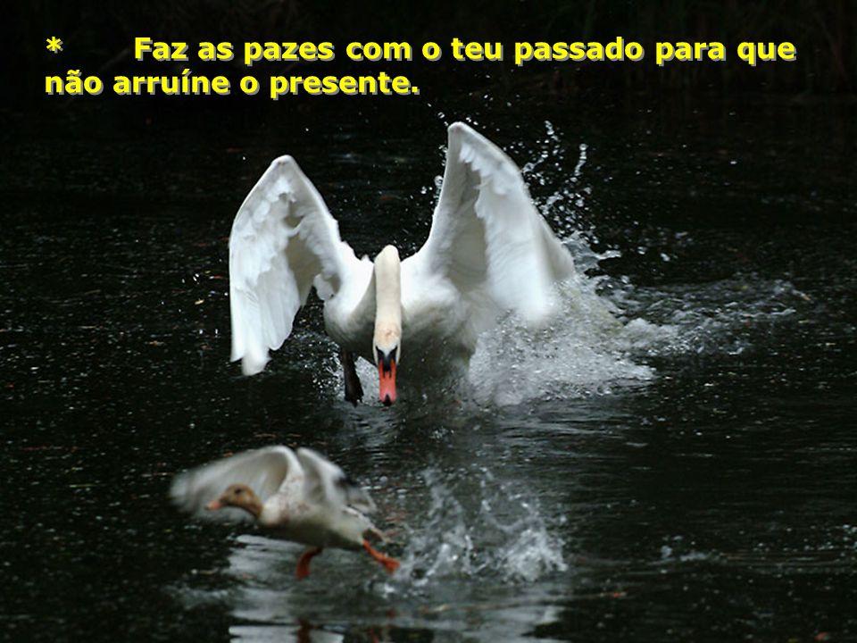 * Faz as pazes com o teu passado para que não arruíne o presente.