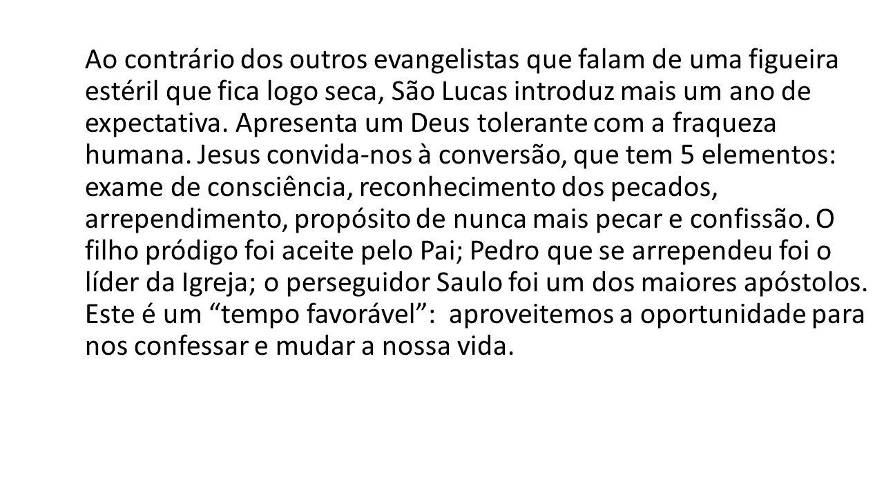 Ao contrário dos outros evangelistas que falam de uma figueira estéril que fica logo seca, São Lucas introduz mais um ano de expectativa.