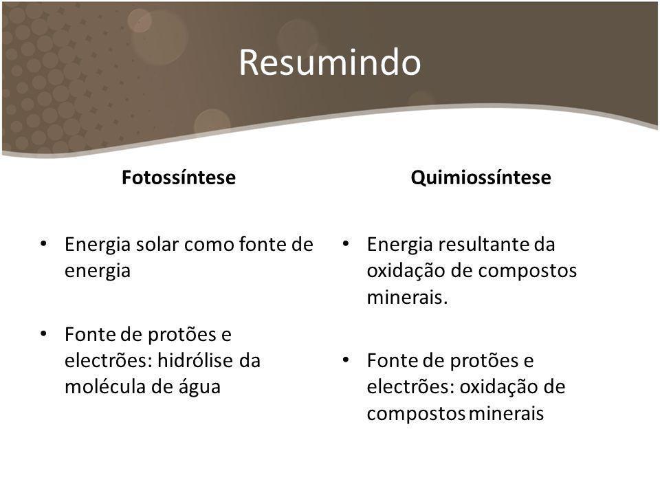 Resumindo Fotossíntese Quimiossíntese