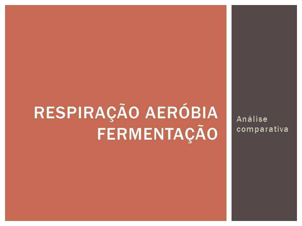 Respiração aeróbia fermentação