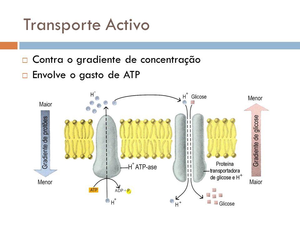 Transporte Activo Contra o gradiente de concentração
