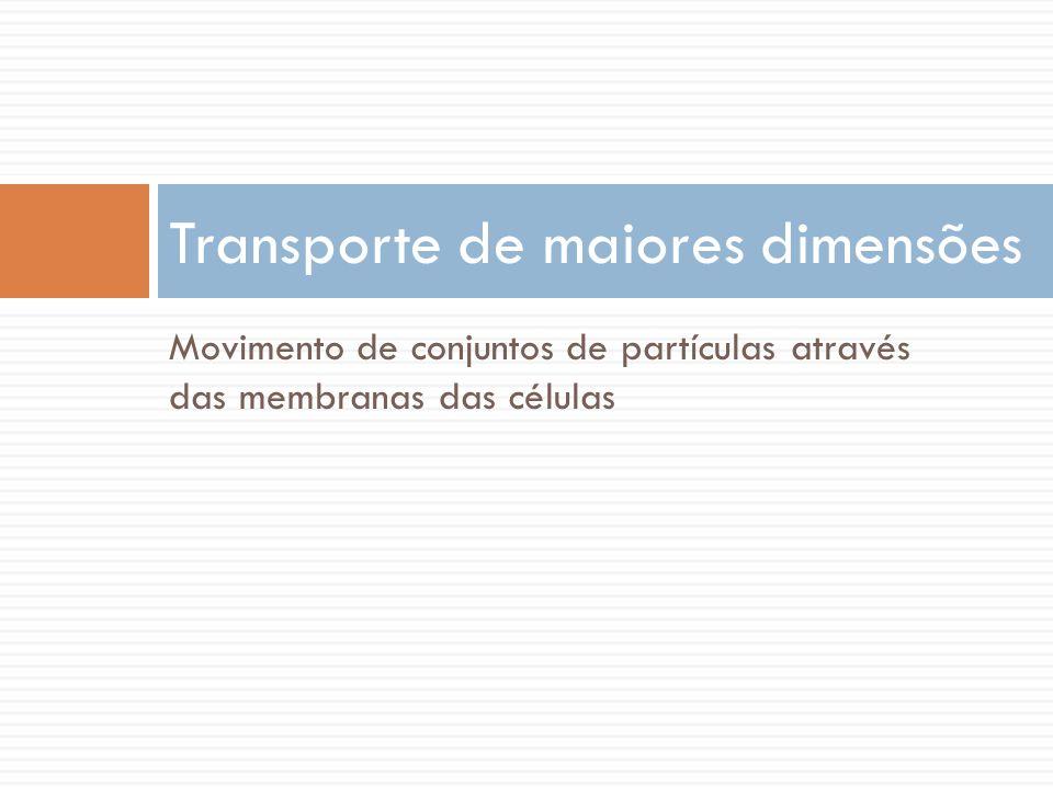 Transporte de maiores dimensões