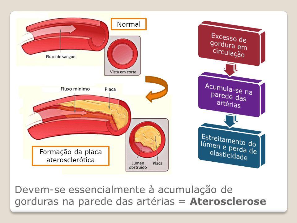 Normal Excesso de gordura em circulação. Acumula-se na parede das artérias. Estreitamento do lúmen e perda de elasticidade.