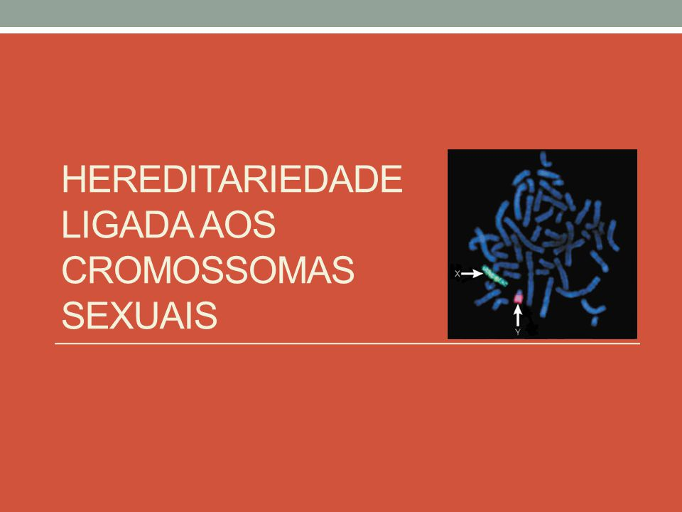 Hereditariedade ligada aos cromossomas sexuais