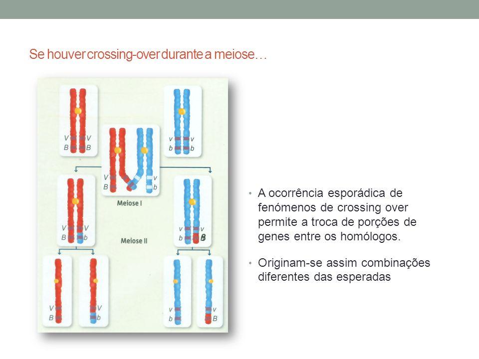 Se houver crossing-over durante a meiose…