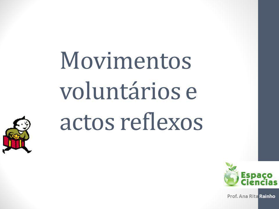 Movimentos voluntários e actos reflexos