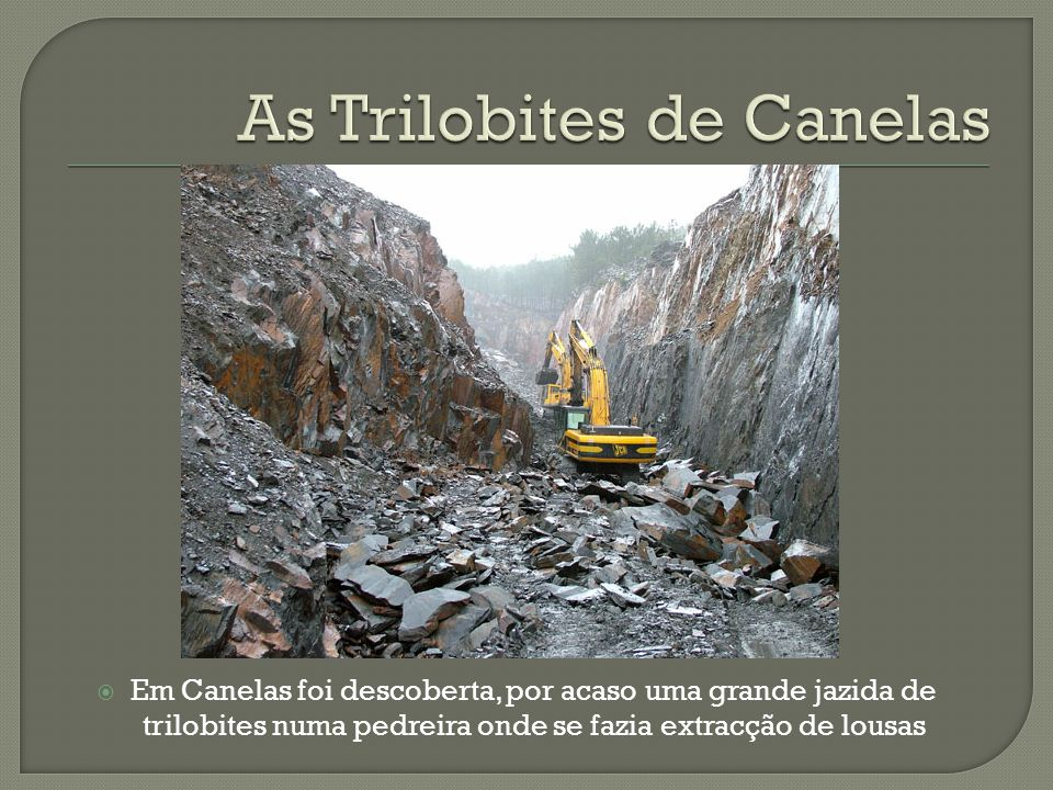 As Trilobites de Canelas