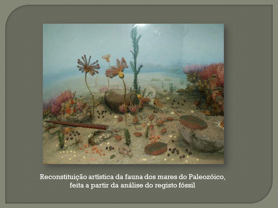 Reconstituição artística da fauna dos mares do Paleozóico, feita a partir da análise do registo fóssil