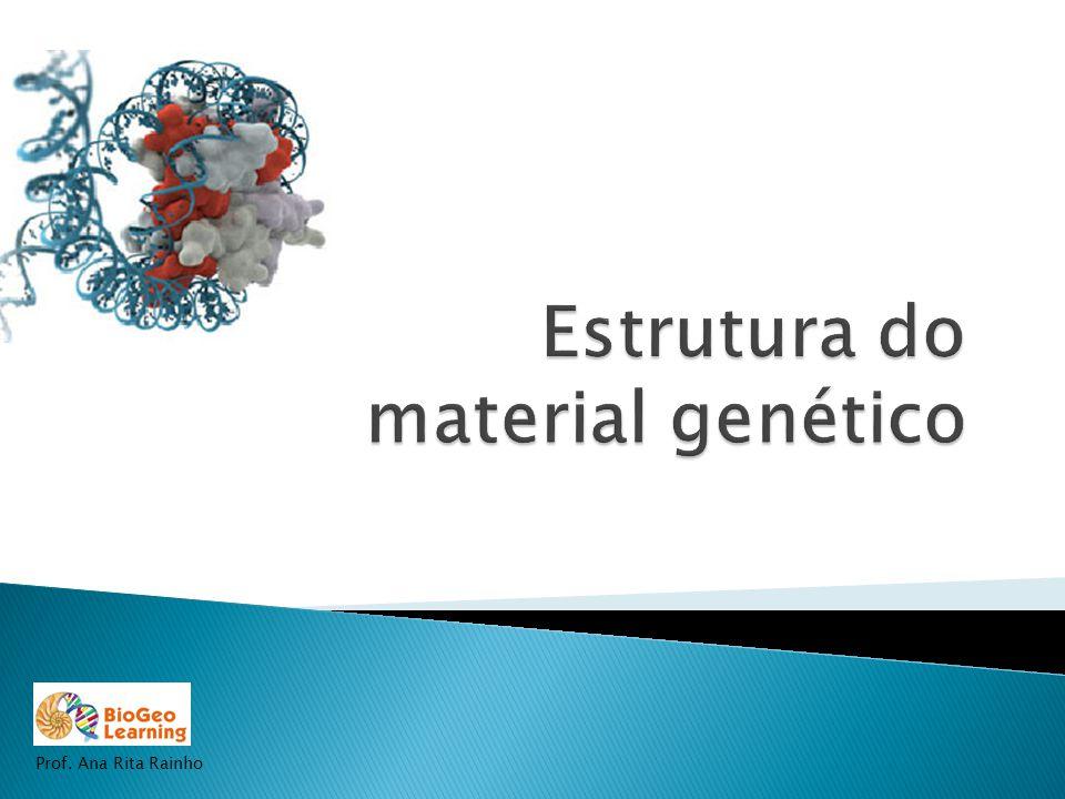 Estrutura do material genético