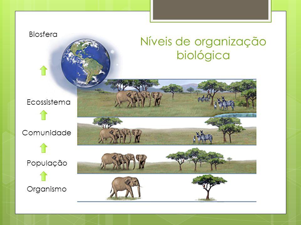 Níveis de organização biológica