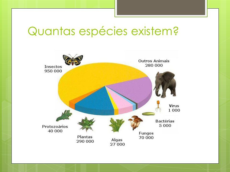 Quantas espécies existem