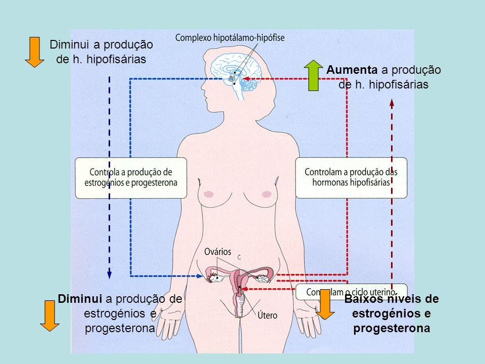 Baixos níveis de estrogénios e progesterona