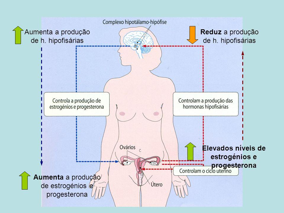 Elevados níveis de estrogénios e progesterona
