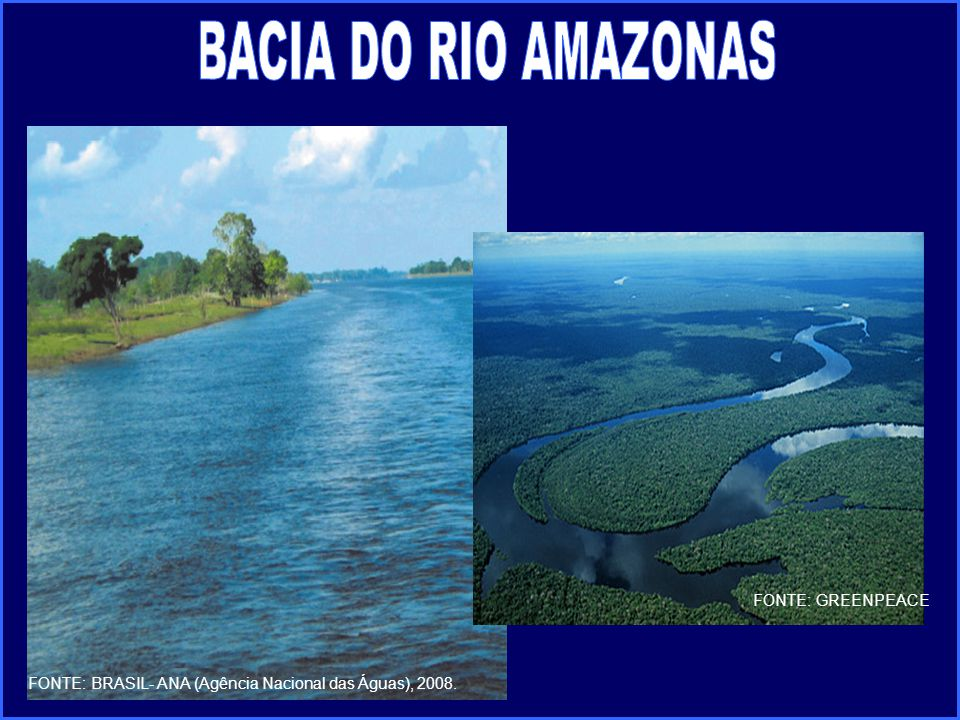 BACIA DO RIO AMAZONAS FONTE: GREENPEACE