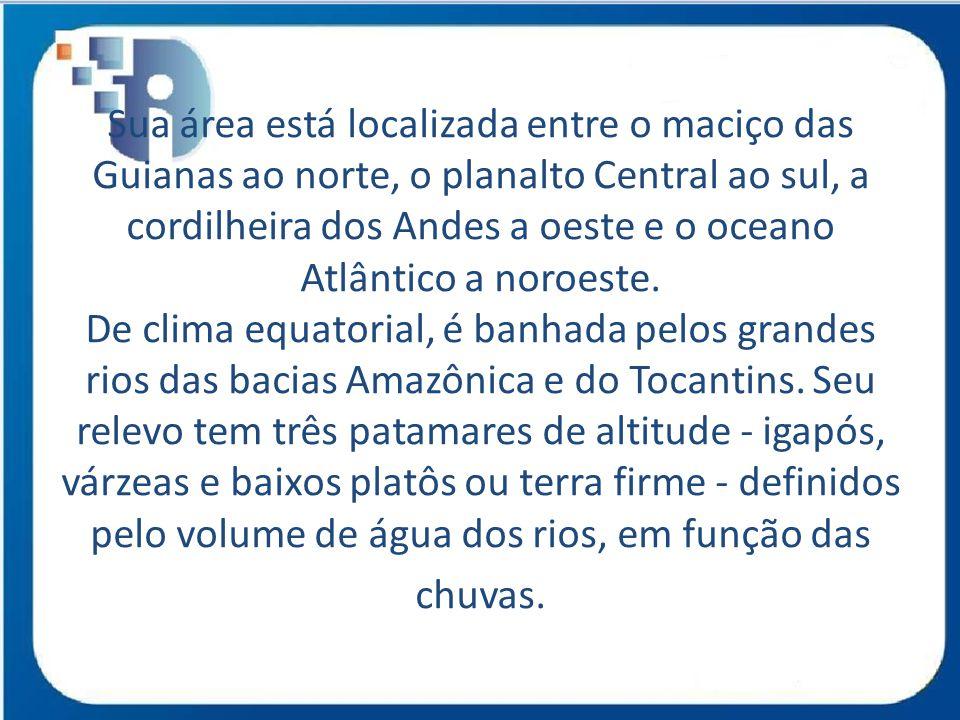 Sua área está localizada entre o maciço das Guianas ao norte, o planalto Central ao sul, a cordilheira dos Andes a oeste e o oceano Atlântico a noroeste. De clima equatorial, é banhada pelos grandes rios das bacias Amazônica e do Tocantins. Seu relevo tem três patamares de altitude - igapós, várzeas e baixos platôs ou terra firme - definidos pelo volume de água dos rios, em função das chuvas.