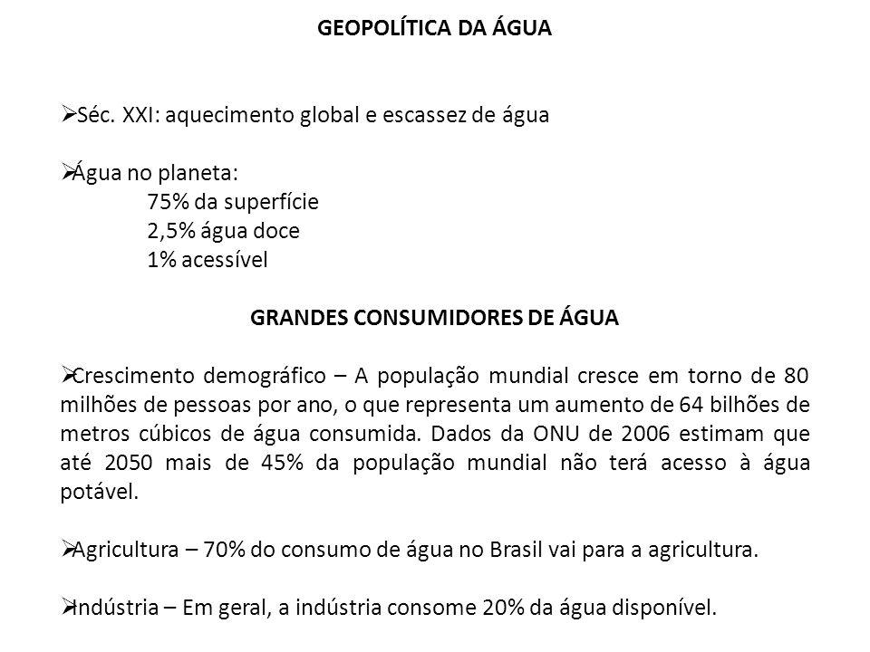 GRANDES CONSUMIDORES DE ÁGUA