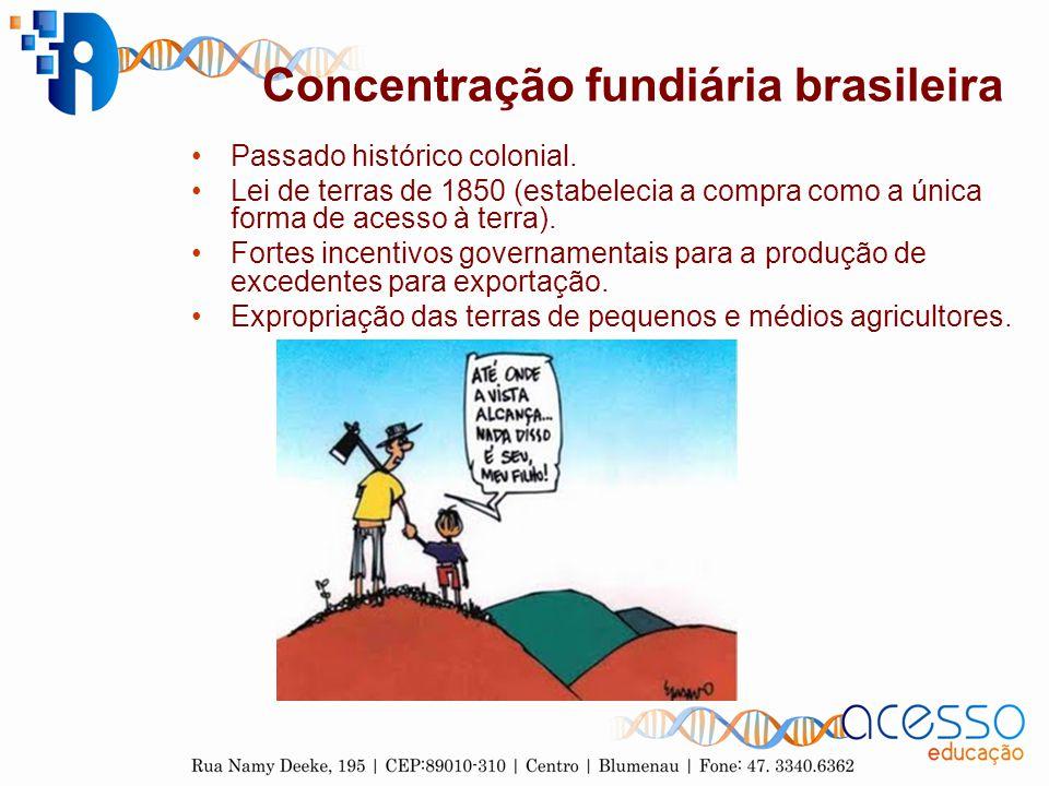 Concentração fundiária brasileira