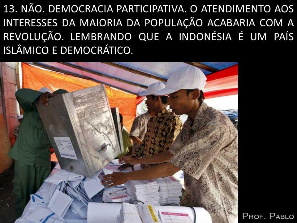 13. NÃO. DEMOCRACIA PARTICIPATIVA