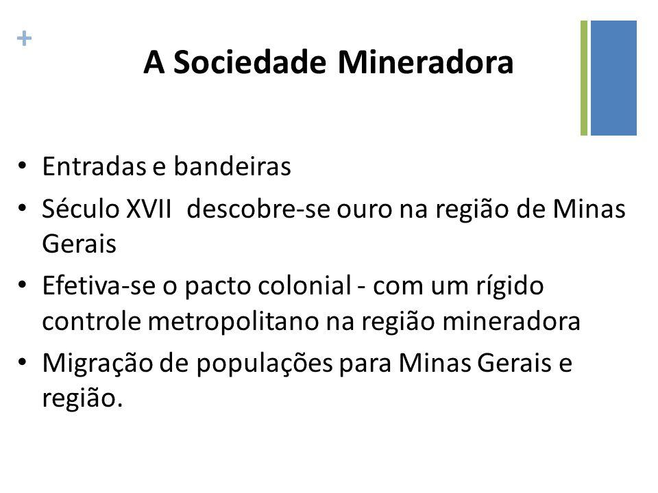 A Sociedade Mineradora