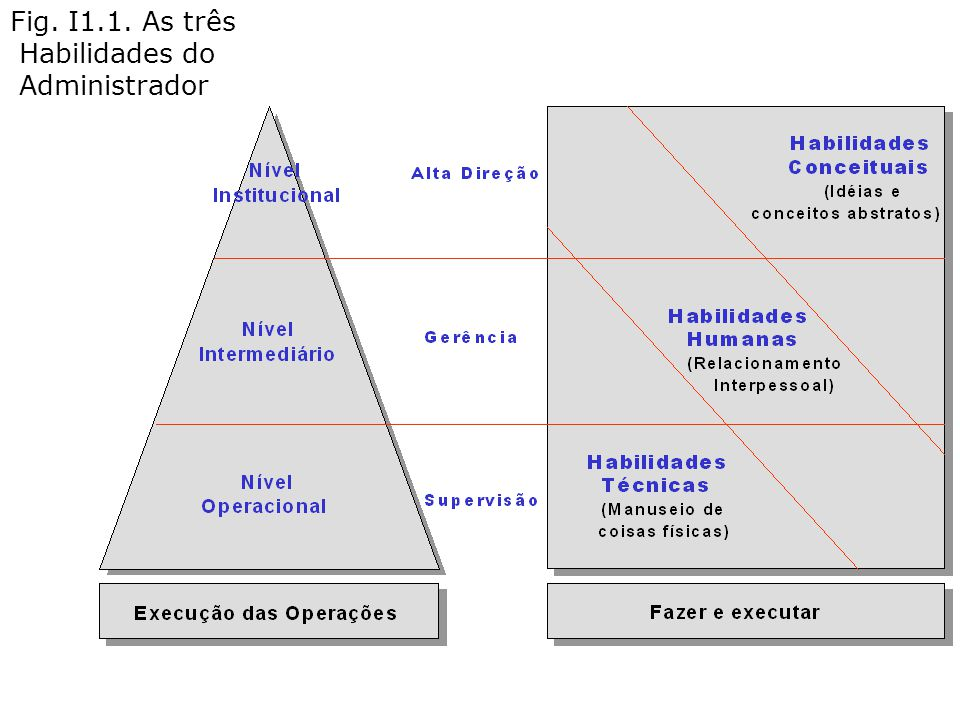Fig. I1.1. As três Habilidades do Administrador