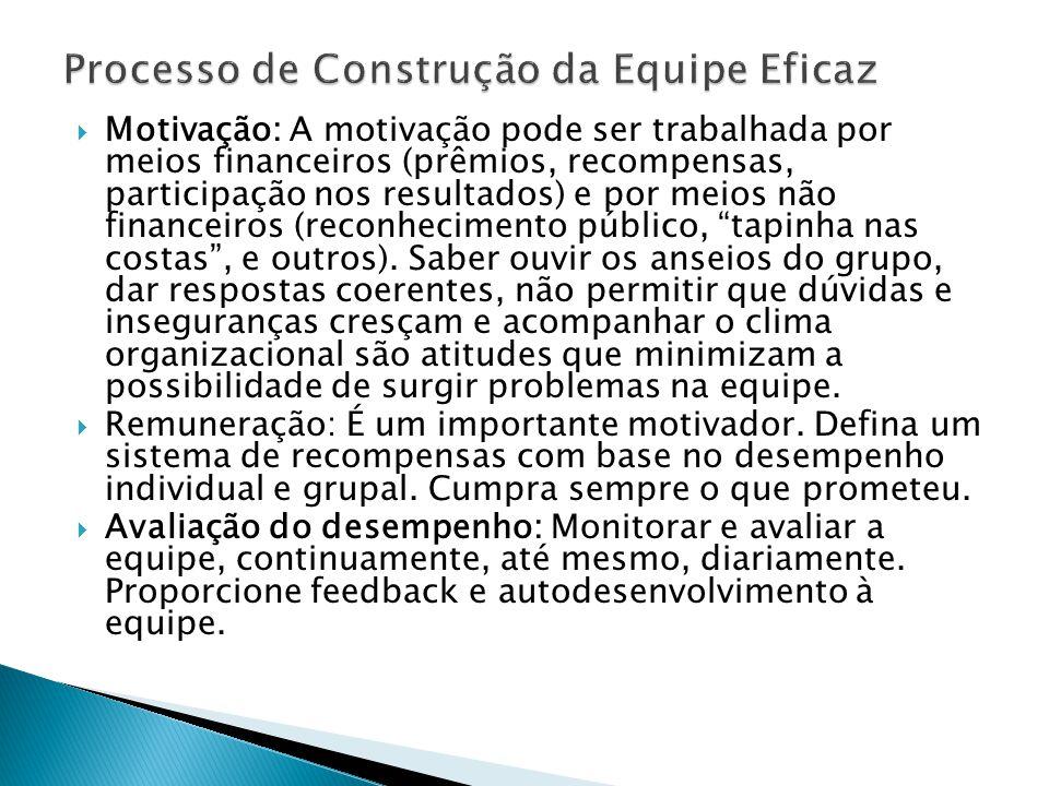 Processo de Construção da Equipe Eficaz
