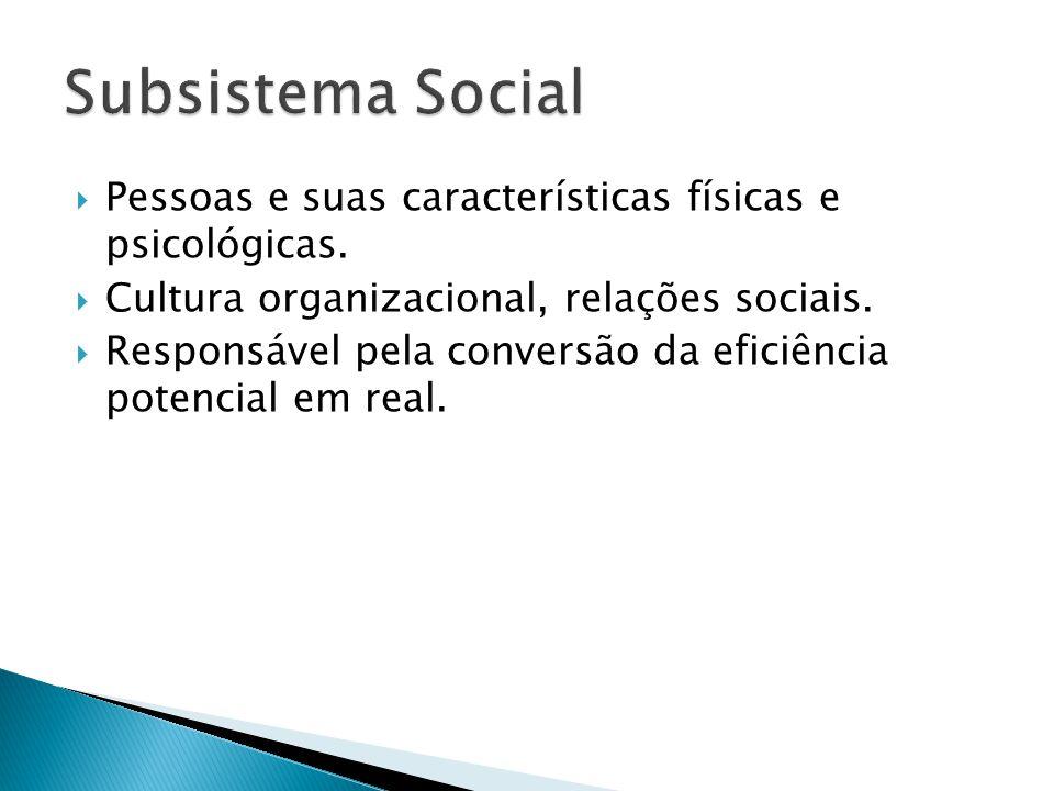 Subsistema Social Pessoas e suas características físicas e psicológicas. Cultura organizacional, relações sociais.