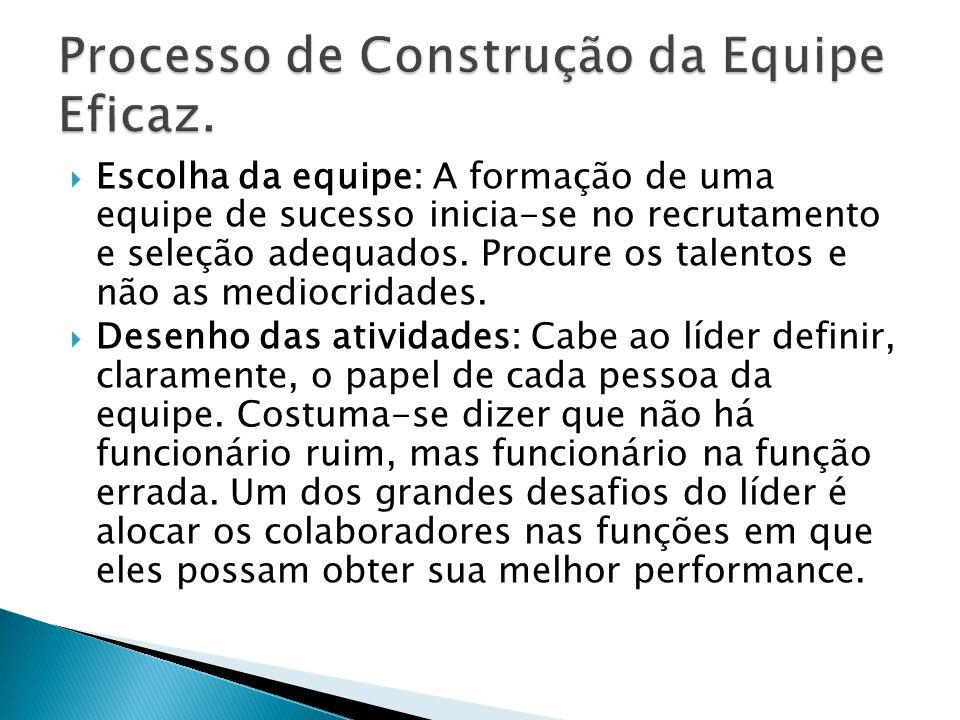 Processo de Construção da Equipe Eficaz.