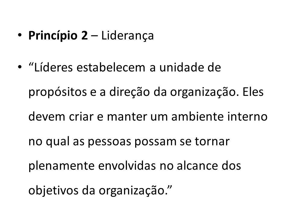 Princípio 2 – Liderança