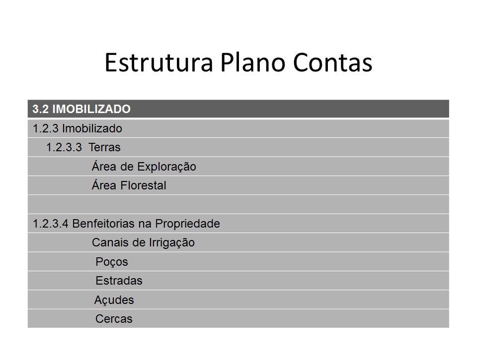 Estrutura Plano Contas