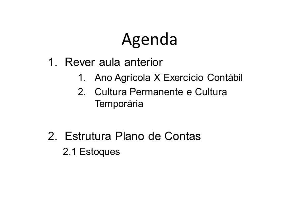 Agenda Rever aula anterior Estrutura Plano de Contas