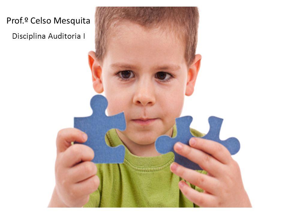 Disciplina Auditoria I