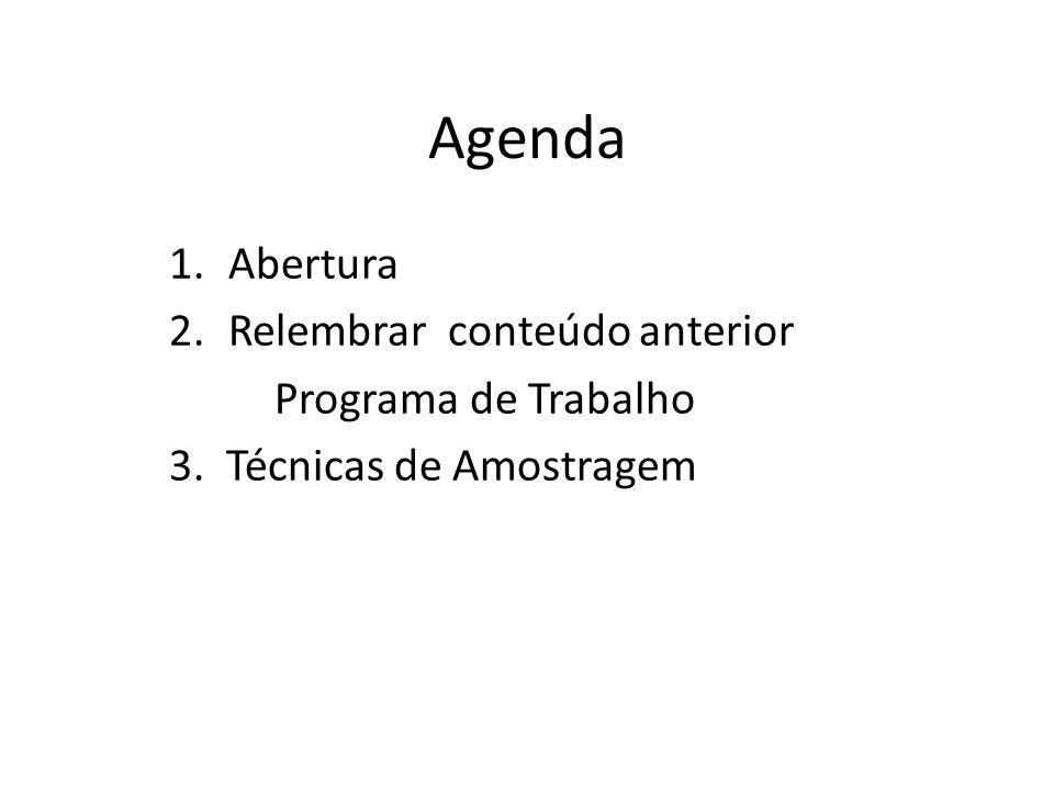 Agenda Abertura Relembrar conteúdo anterior Programa de Trabalho