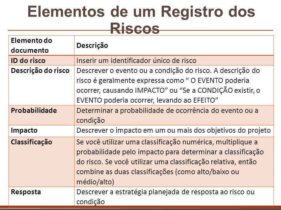 Elementos de um Registro dos Riscos