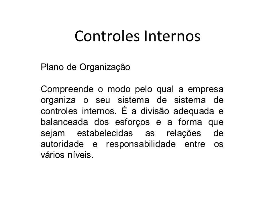 Controles Internos Plano de Organização