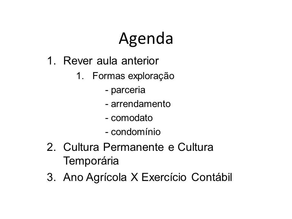 Agenda Rever aula anterior Cultura Permanente e Cultura Temporária