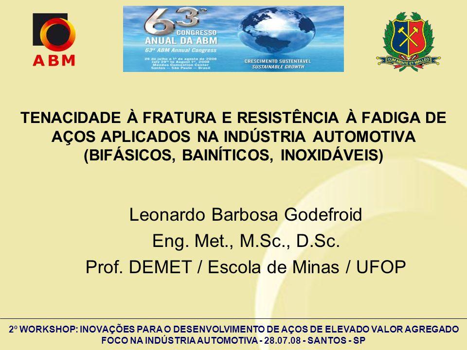 Leonardo Barbosa Godefroid Eng. Met., M.Sc., D.Sc.