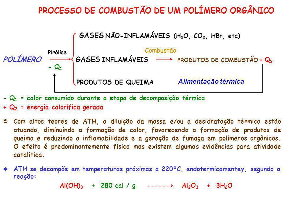 PROCESSO DE COMBUSTÃO DE UM POLÍMERO ORGÂNICO