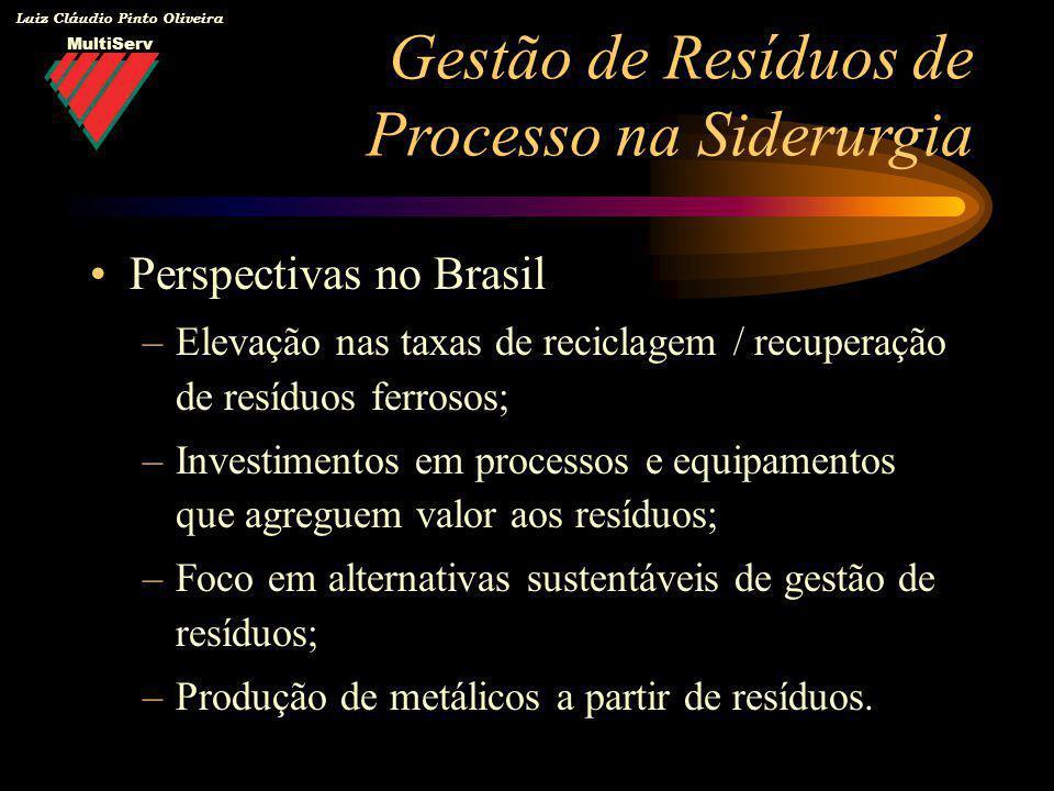 Luiz Cláudio Pinto Oliveira