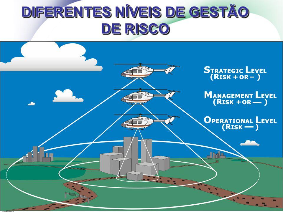 DIFERENTES NÍVEIS DE GESTÃO DE RISCO