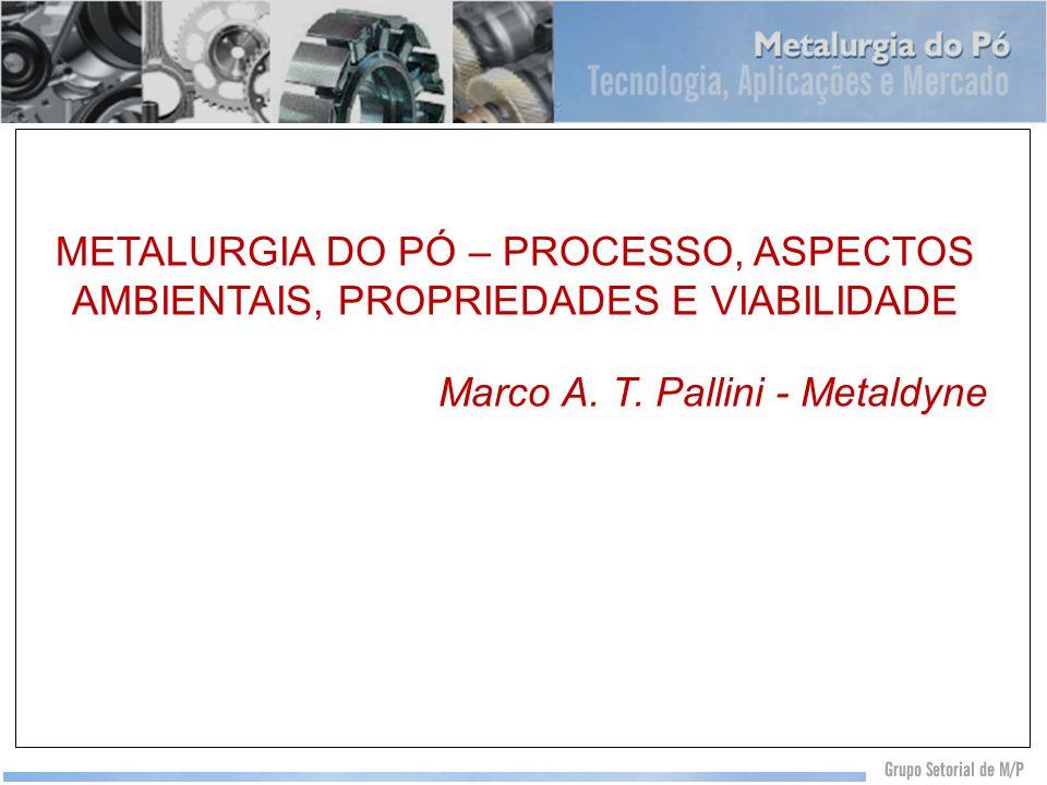 Marco A. T. Pallini - Metaldyne