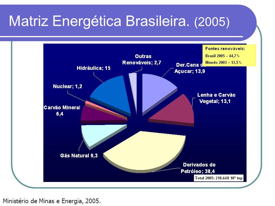 Matriz Energética Brasileira. (2005)