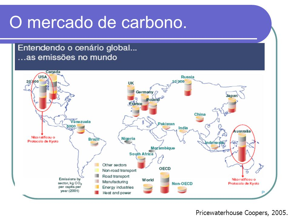 O mercado de carbono. Pricewaterhouse Coopers, 2005.