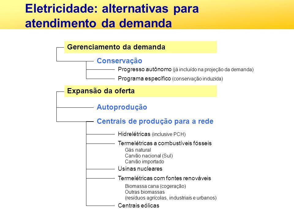 Eletricidade: alternativas para atendimento da demanda