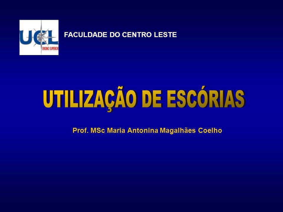 UTILIZAÇÃO DE ESCÓRIAS Prof. MSc Maria Antonina Magalhães Coelho
