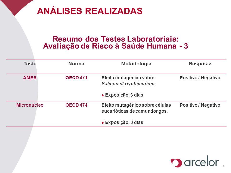 Resumo dos Testes Laboratoriais: Avaliação de Risco à Saúde Humana - 3