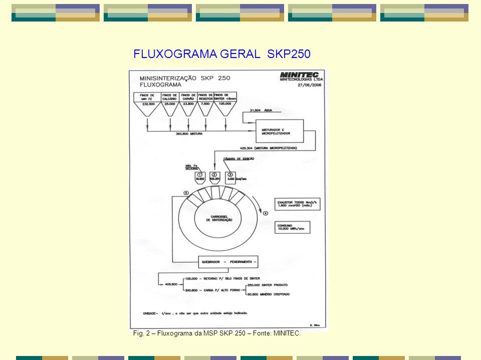 FLUXOGRAMA GERAL SKP250 Fig. 2 – Fluxograma da MSP SKP 250 – Fonte: MINITEC.