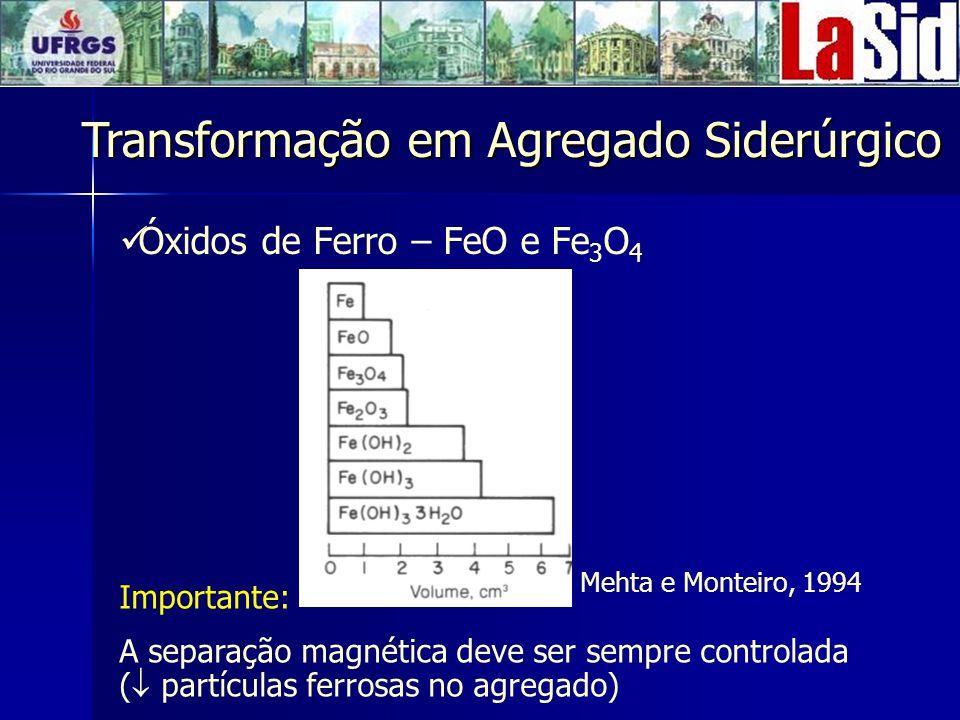 Óxidos de Ferro – FeO e Fe3O4